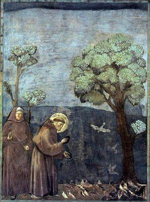 Giotto, San Francesco predica agli uccelli, Basilica superiore di Assisi