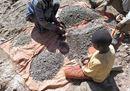 I piccoli schiavi del cobalto. Ecco come lavorano per produrre i nostri cellulari