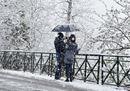 Dal Piemonte al Veneto, la neve sposta la primavera