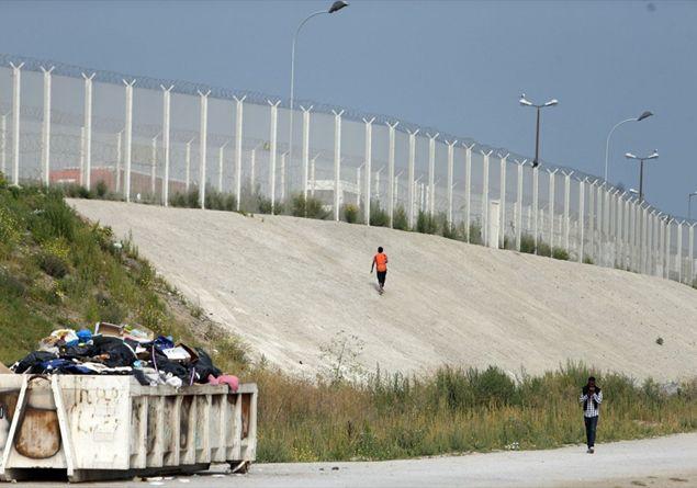 Calais, l'Europa e la politica del calce... struzzo