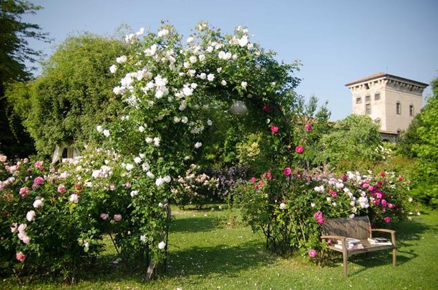 Le fioriture dei giardini del network il parco pi bello - Giardini di montagna foto ...