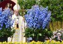 Papa Francesco in San Pietro tra i fiori olandesi