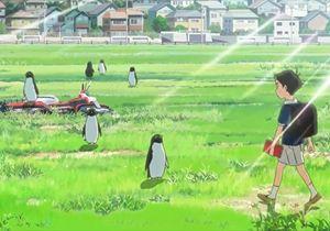 Penguin Highway: la fiaba anime al cinema solo per pochi giorni