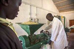 Lo stabilimento del progetto del Cefa, Ong della rete Focsiv, a Kylolo, in Tanzania.