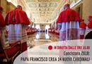 Il Concistoro in diretta: il Papa crea 14 nuovi cardinali